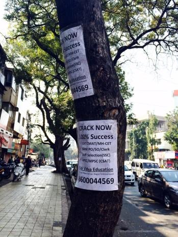 Advertisement stuck on the trees